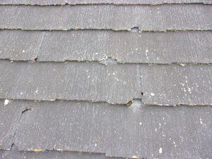 屋根の傷みは普段気付けません!